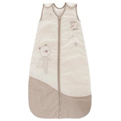 Teddy Bear Sleeping Bag
