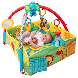 Bright Starts Sensory Sunny Safari Baby Activity Gym