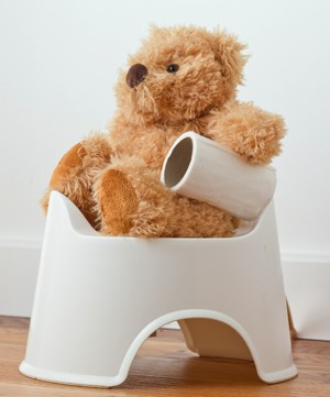 Bear potty training