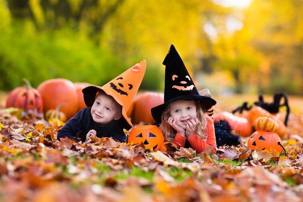 Children wearing black and orange witch costumes with hats playing with pumpkin and spider in autumn Park on Halloween