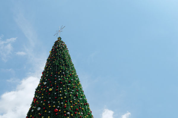 giant christmas tree with blue sky background