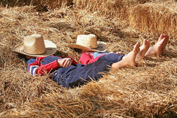 Two Little Farmers Asleep in the Hay
