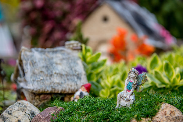 Miniature moss garden with fairies and gnomes and a quaint little house surrounded by fresh plants and flowers in a folklore and fantasy concept