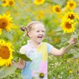 Child playing in sunflower field on sunny summer day. Kids play with sunflowers. Little girl picking sun flowers in summer garden. Children gardening. Family vacation in Tuscany, Italy. Gardener kid.