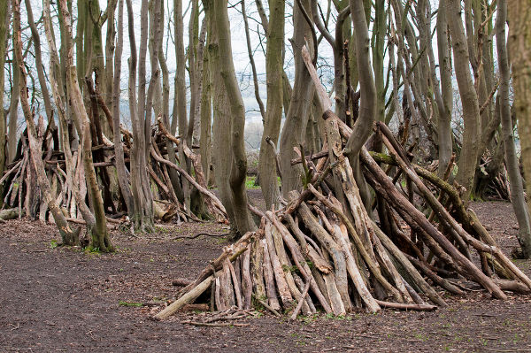 Hand made stick den in a forest clearing