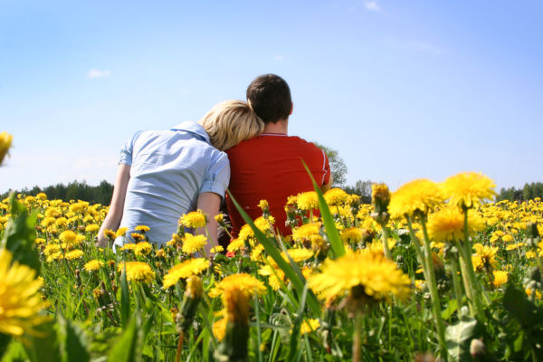 Happy couple sitting in a meadow
