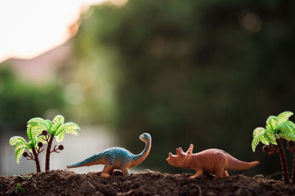 Toy dinosaurs in a garden