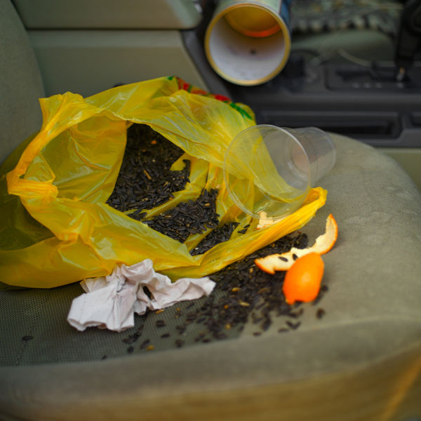 Sunflower Seeds And Other Rubbish Left On A Car Seat,