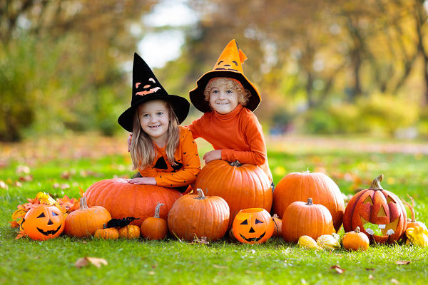 Kids trick or treat on Halloween. Children in black and orange witch costume and hat play with pumpkin and spider in autumn park.