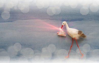 Stork delivering baby blured background and lens flare